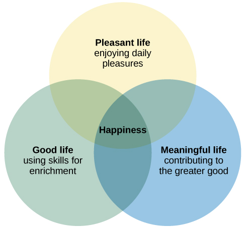CNX_Psych_14_05_Happiness