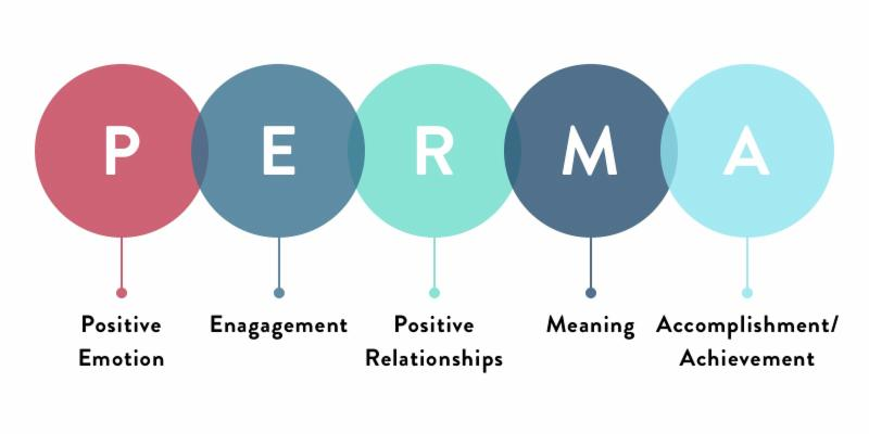PERMA Model and Well-Being